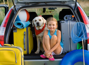Traveling With Your Pet? Tips to Make It Easy.